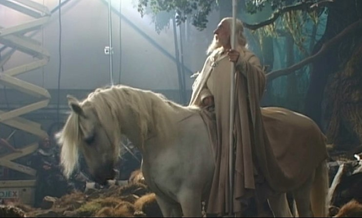 How Many Horses Were Used In Lord Of The Rings